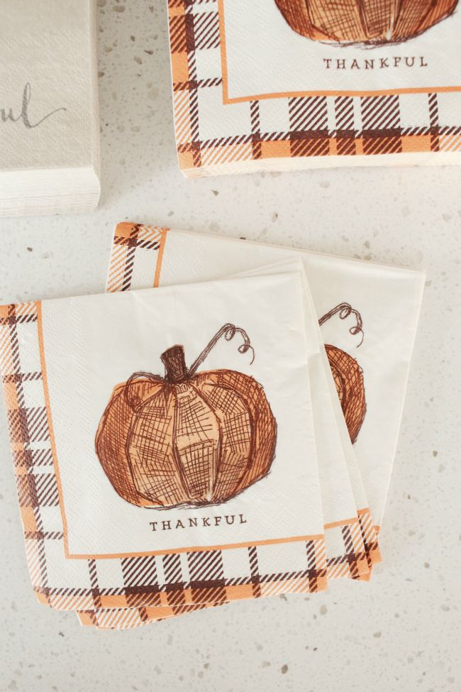 ThanksgivingR3