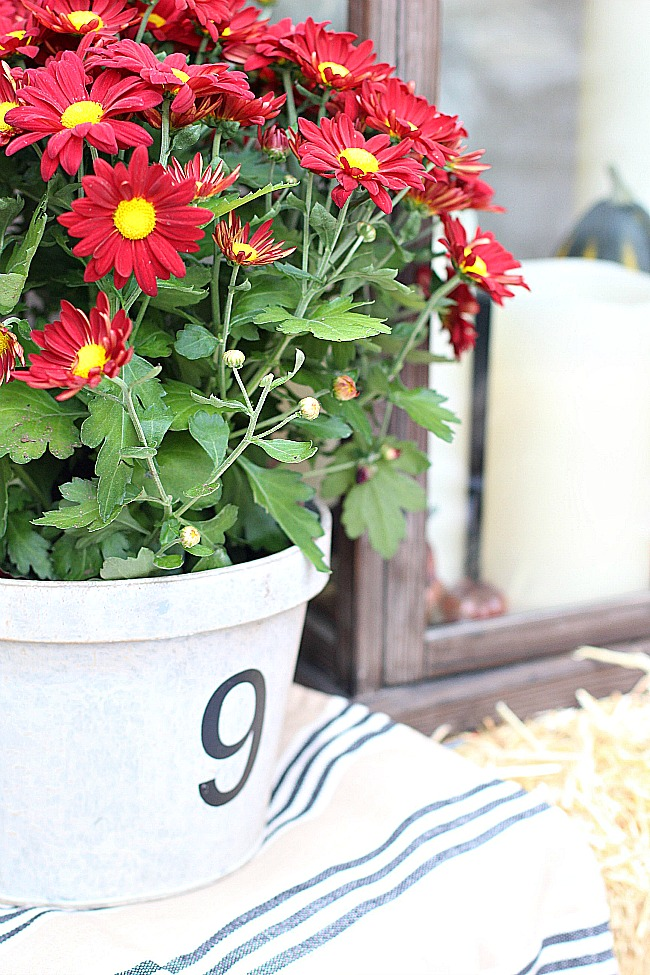 fall-porch-21