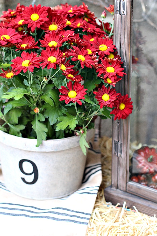 fall-porch-22