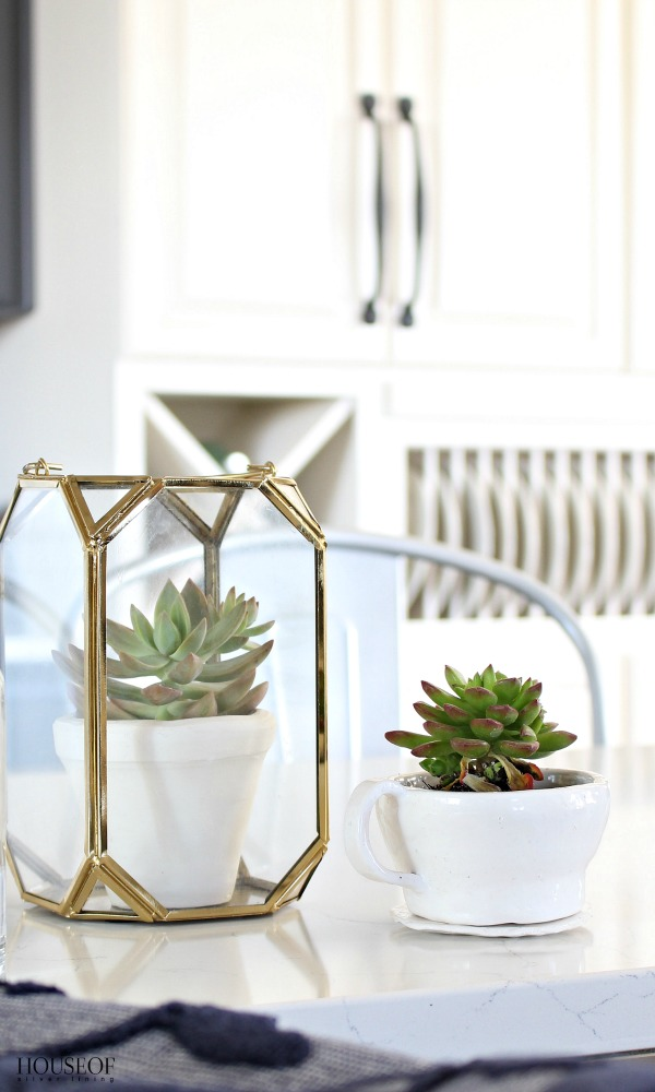 Pretty-storage-solutions-for-the-kitchen-cloches-and-terrariums-