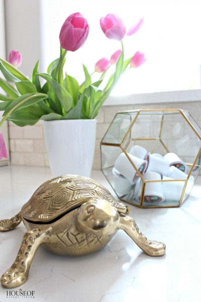 Pretty Storage Solutions for Kitchen: Cloches and Terrariums