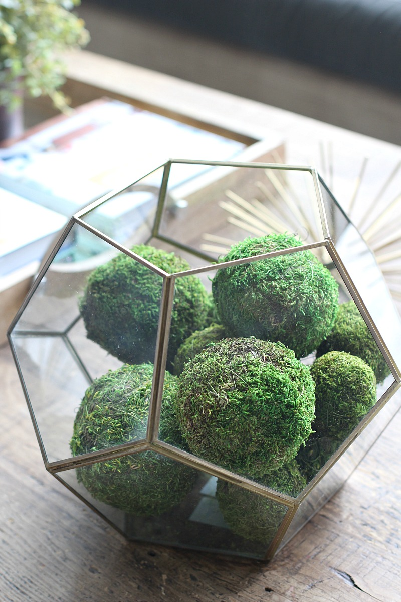 terrarium-decorating-idea-with-moss-balls