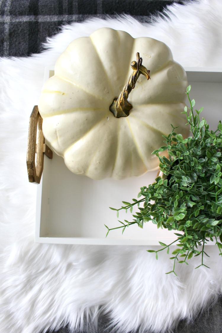 decorated-fall-tray-with-white-pumpkin