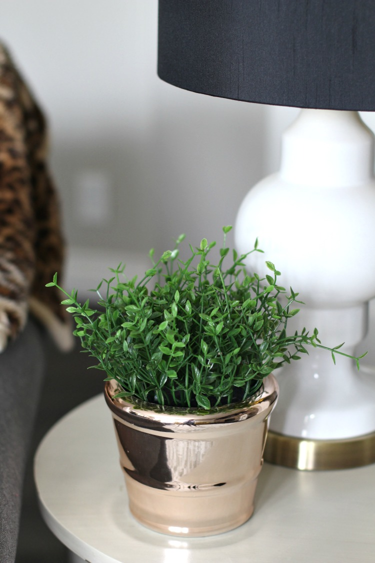 simple-plants-for-fall-decorating