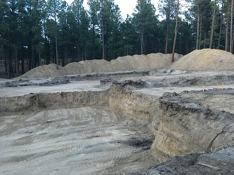 the-forest-modern-excavation