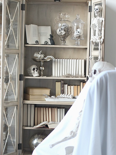 Halloween Styled Shelves of Curiosities