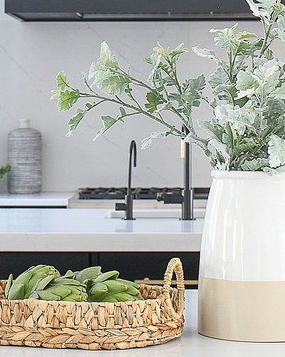 The Forest Modern: Kitchen Q & A