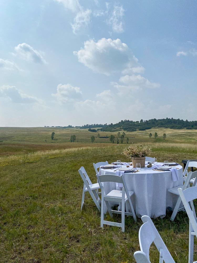 elegant picnic